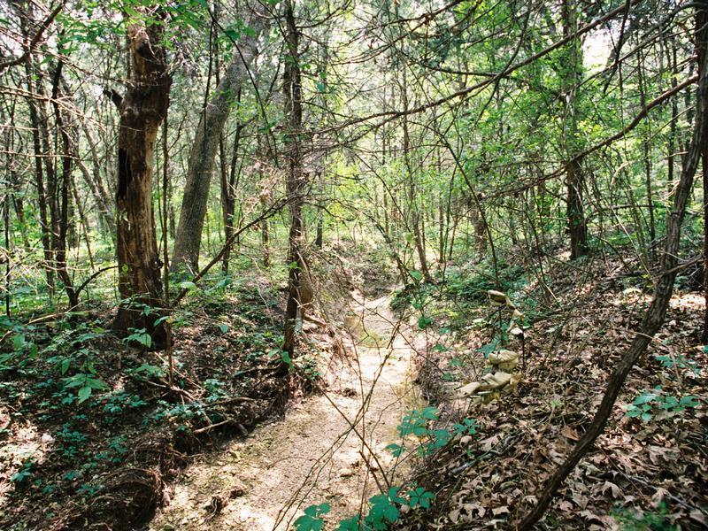 Cedar hill economic development corporation recreation for Dogwood canyon